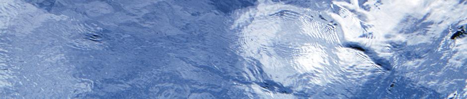 Robbenwasser